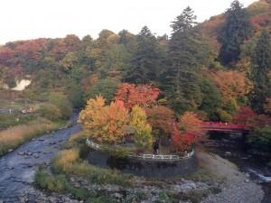 中野紅葉山