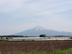 写真 2013-06-02 13 43 21