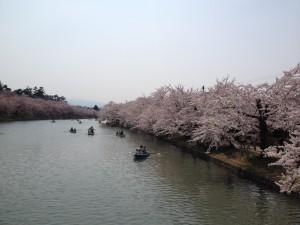 写真 2014-04-26 13 01 40